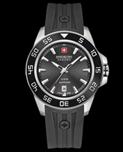 Men's watch Swiss Military Hanowa 06-4221.04.007