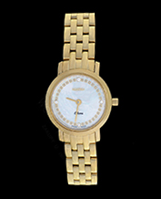 SWISS LADIES WATCH ROAMER 931830 48 89 90 ODEON LADY