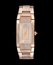 LADIES WATCH PIERRE CARDIN PC104952F08 GOLD