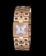 LADIES WATCH PIERRE CARDIN PC105732F03 CALLIGRAP