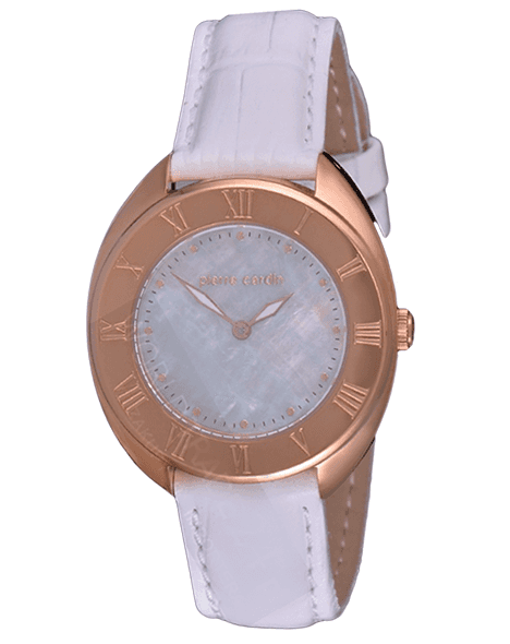 LADIES WATCH PIERRE CARDIN PC104972F09 LEVANT