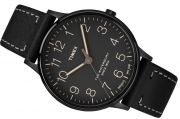 Men's watch Timex TW2P95900 Waterbury