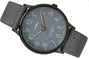 Men's watch Timex TW2P96000 Waterbury